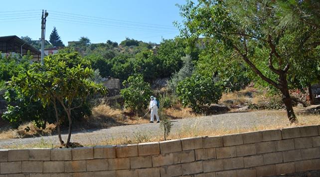 Çankırı'nın Kurşunlu ilçesinde bir köyde karantina uygulama