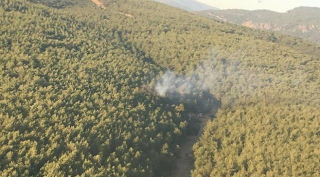 İzmir'in Buca ilçesinde orman yangını çıktı