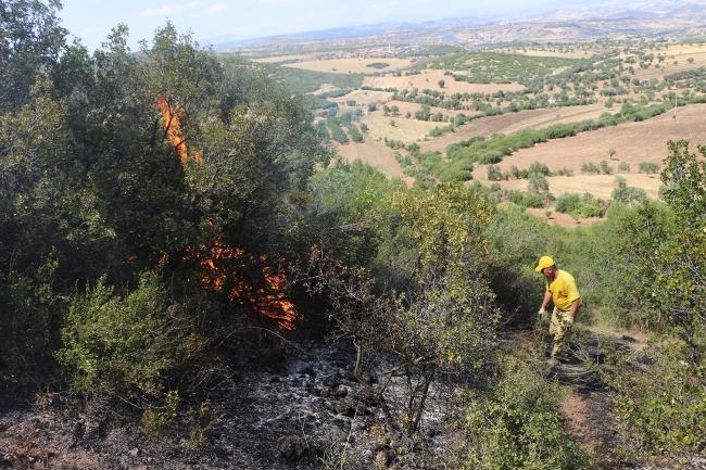 Manisa'nın Kula ilçesinde orman yangını