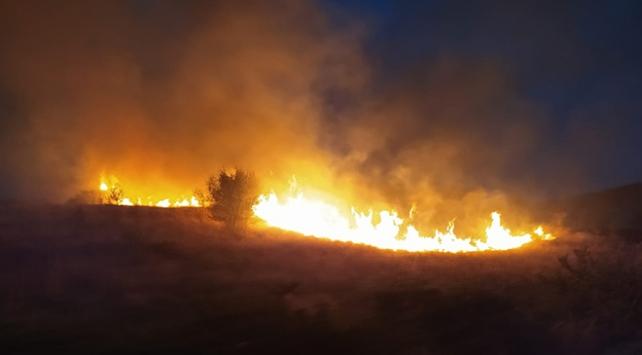 Ankara'da orman yangını